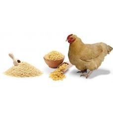 Комбикорма для кур